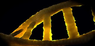 DNA'nın tarihi