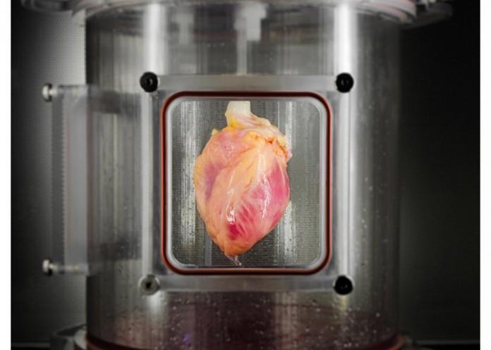 yapay kalp resmi