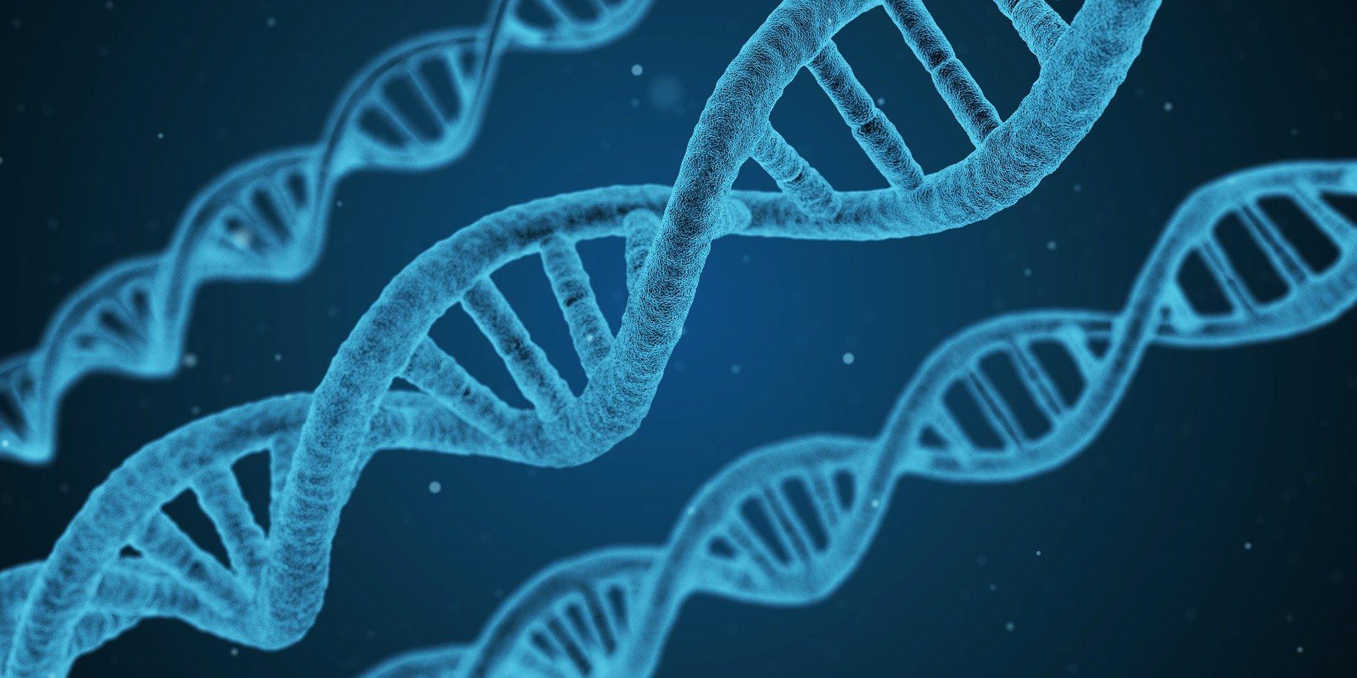 RNA ve DNA yaşam öncesi birlikte gelişti