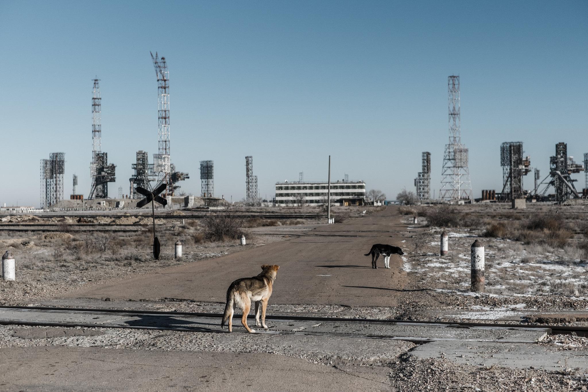 Kosmodromun fırlatma komplekslerinden biri. Ufukta gün ışığında büyük metal kuleler ve füze tutucular var. Yerde az kar kalıntısı var. Yakın planda o bölgede serbest gezen köpekler görünüyor.