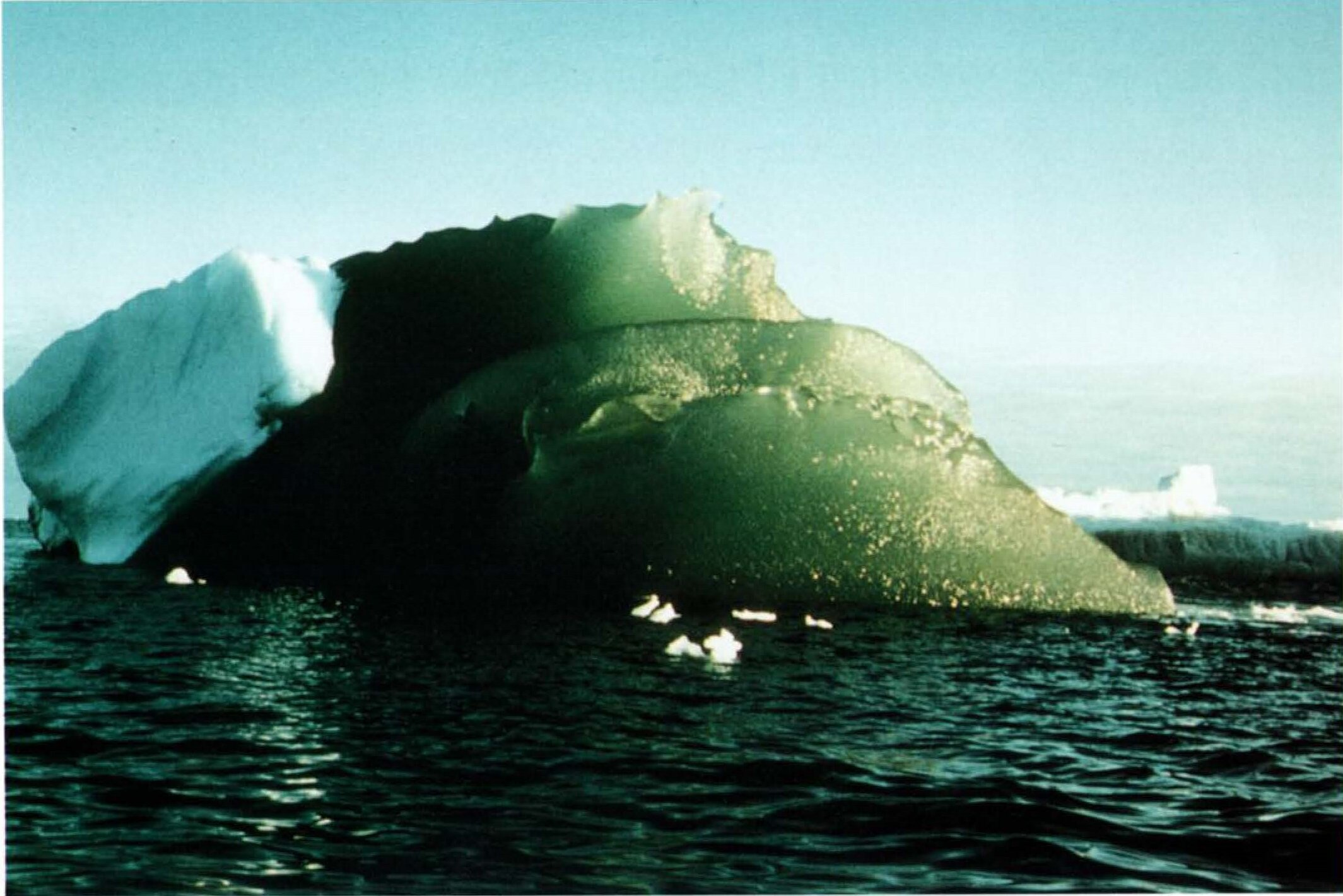 yeşil buzdağları