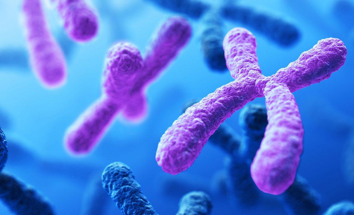 genetik araştırmalarda avrupa bireylerinin kullanımı