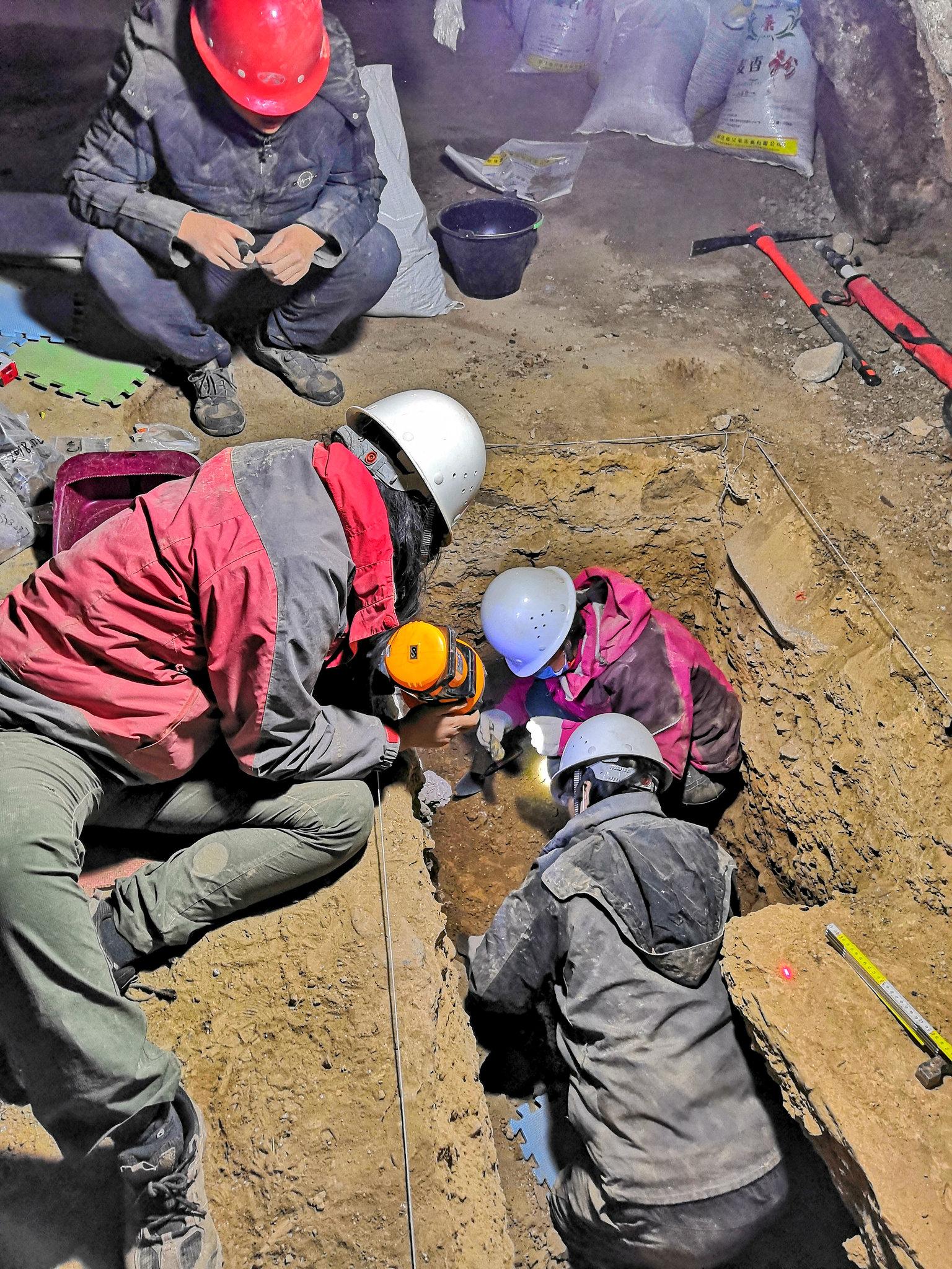 Denisovanlar Tibet'te de tespit edildi.