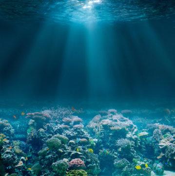 derin deniz yapay zeka