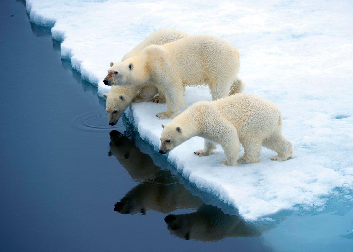 iklim değişikliğini çocuklara anlatmak