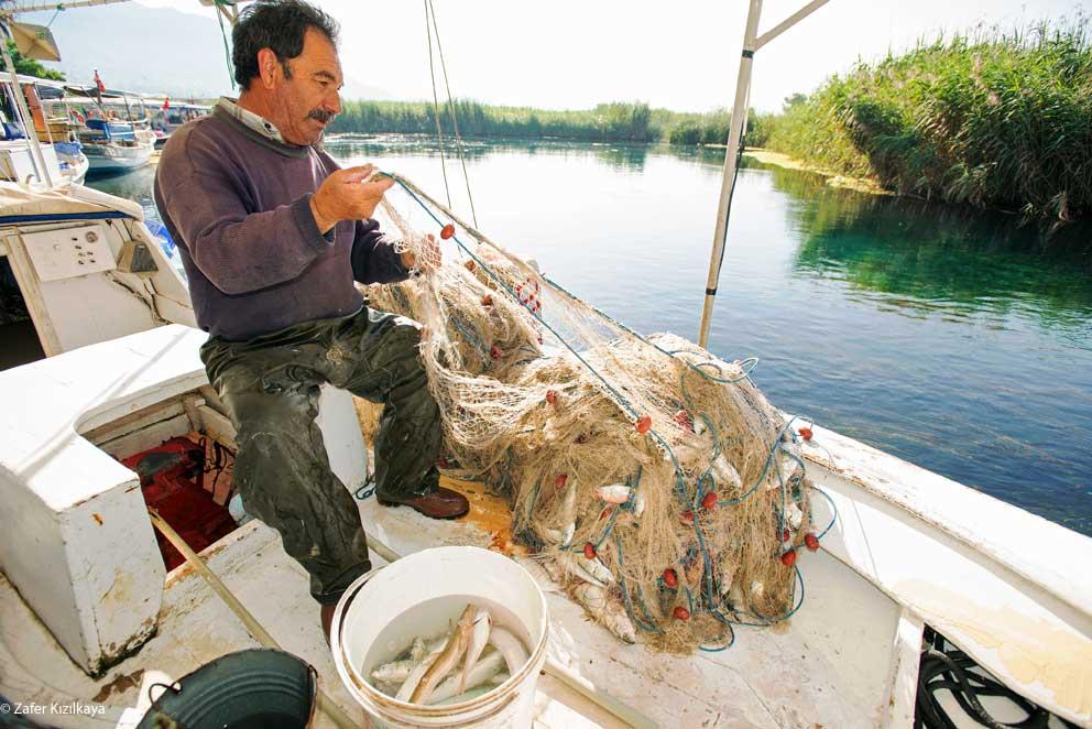 deniz korucu sistemi Akdeniz Koruma Derneği Gökova Körfezi