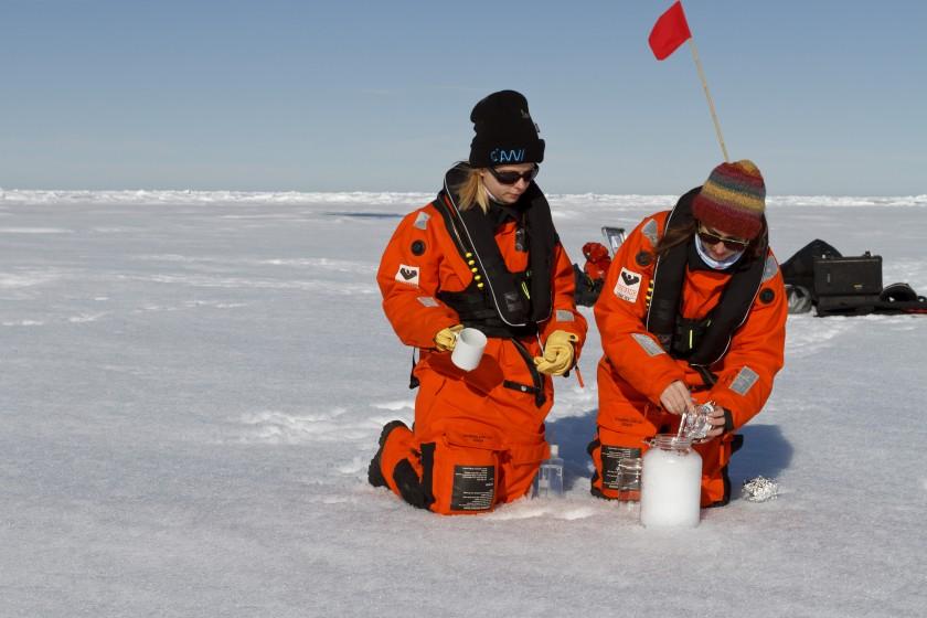 arktik bölgede plastik bulundu