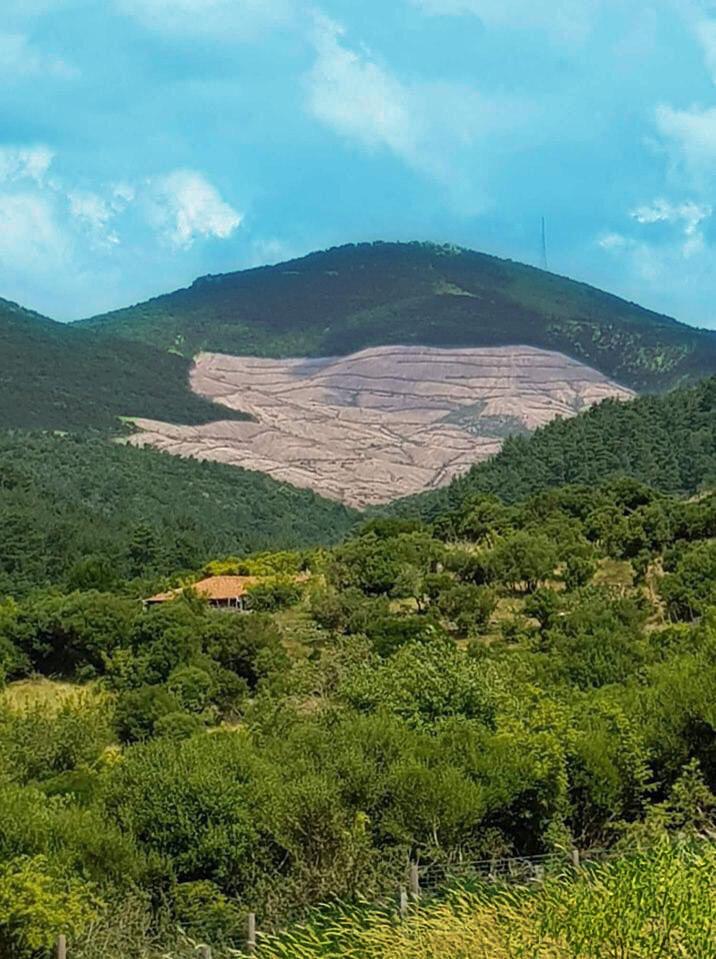 Kaz Dağları polemiği Kirazlı TEMA vakfı
