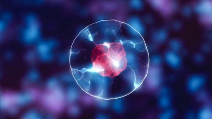 protocell ve yaşamın başlangıcı