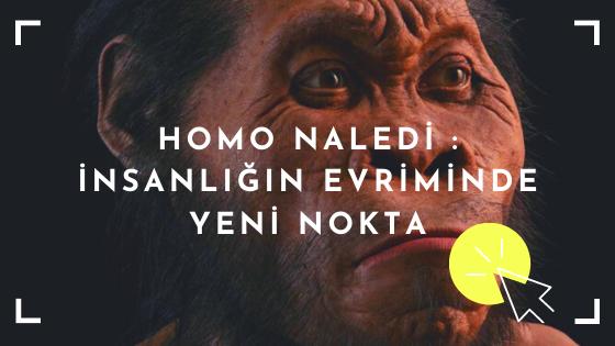 homo naledi yüzü
