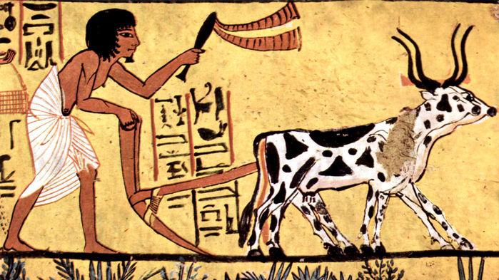 Antik insanlar ve tarıma geçiş