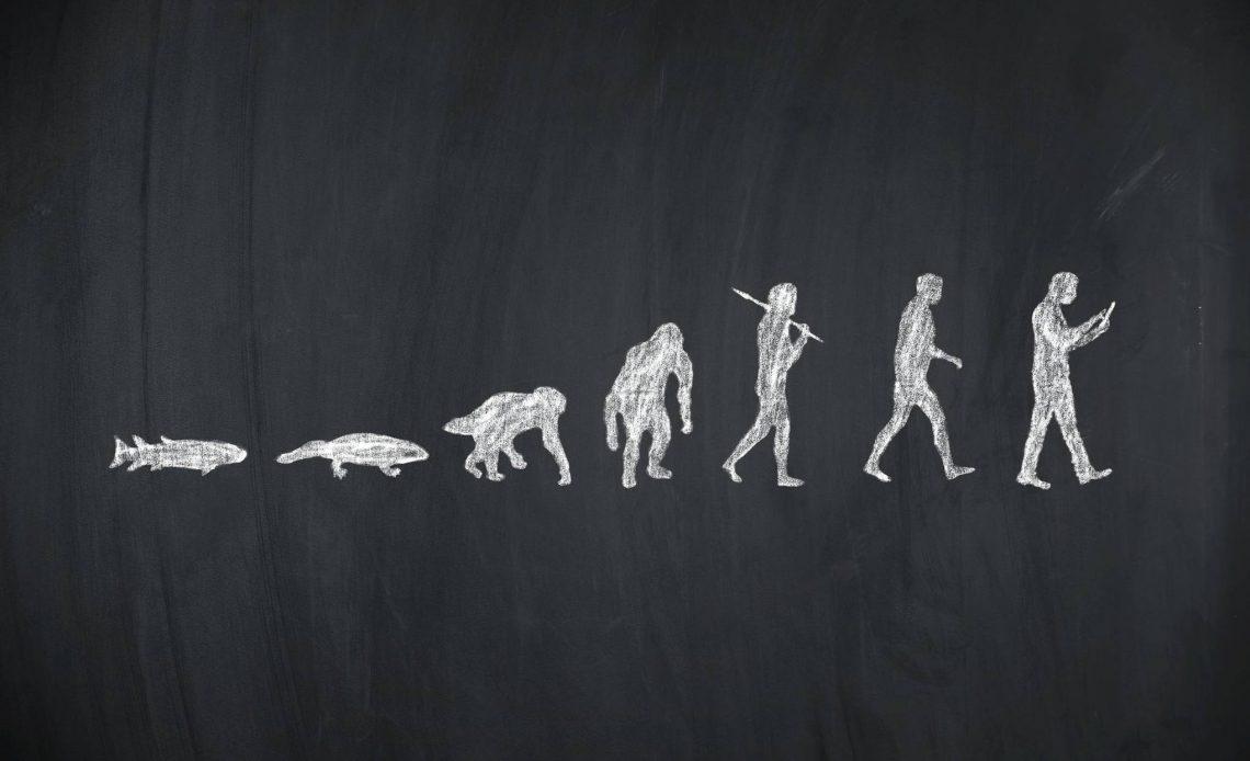 MEB müfredatı evrim konusu
