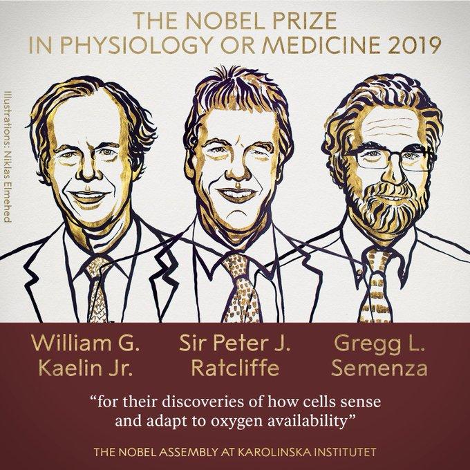 2019 nobel tıp ödülü
