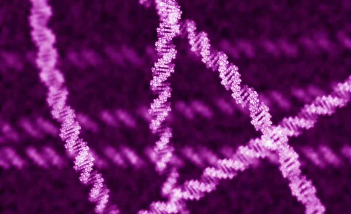 DNA veri