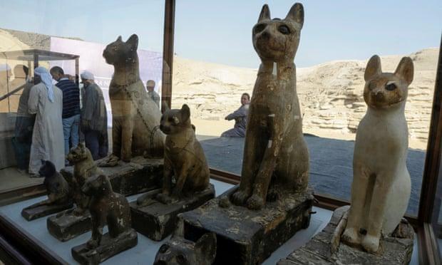 Mısır'da bulunan mumya hayvanlar