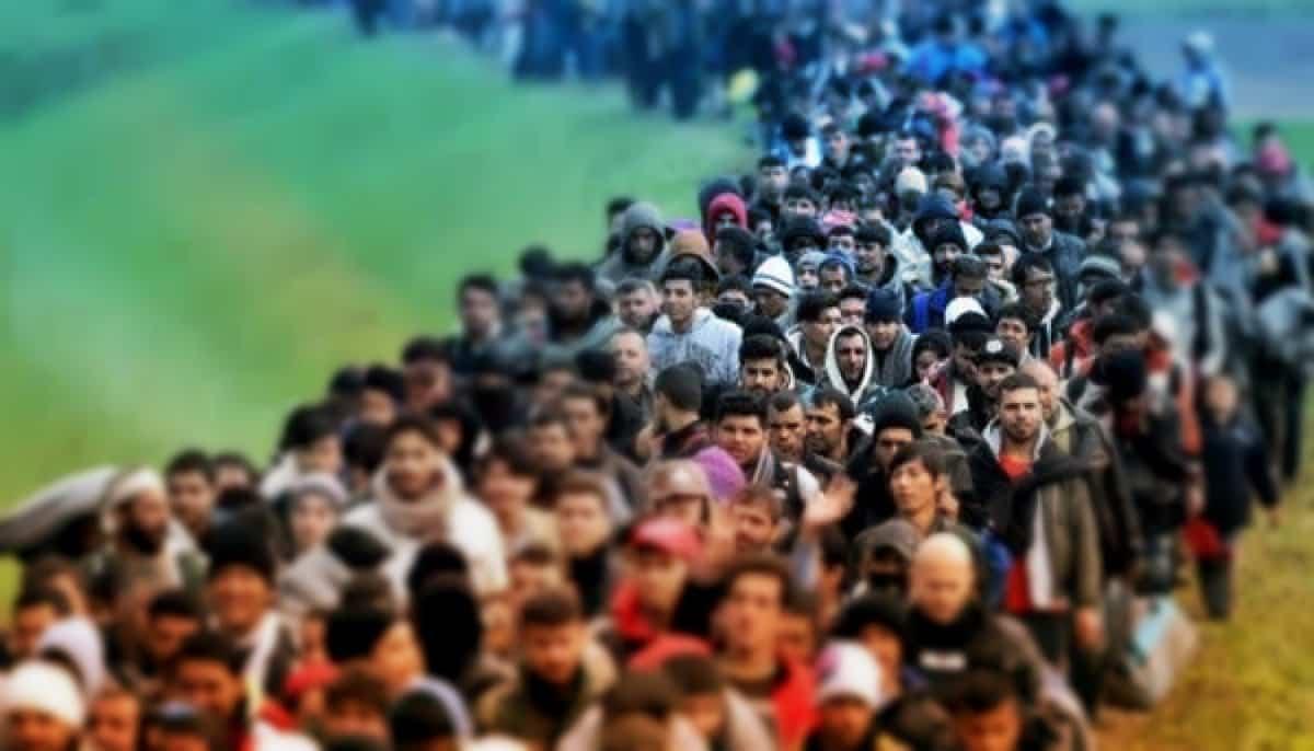 aşı karşıtlığı ve göç sorunu