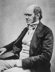 yetişkinliği Charles Darwin