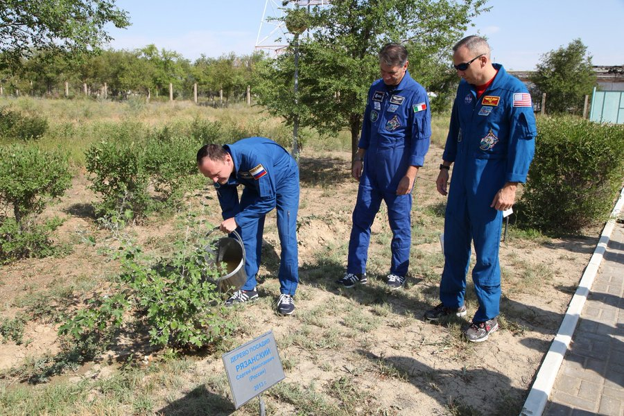 Astronot Sergey, ağacını dikiyor. Сергей Рязанский Baykonur ağaç