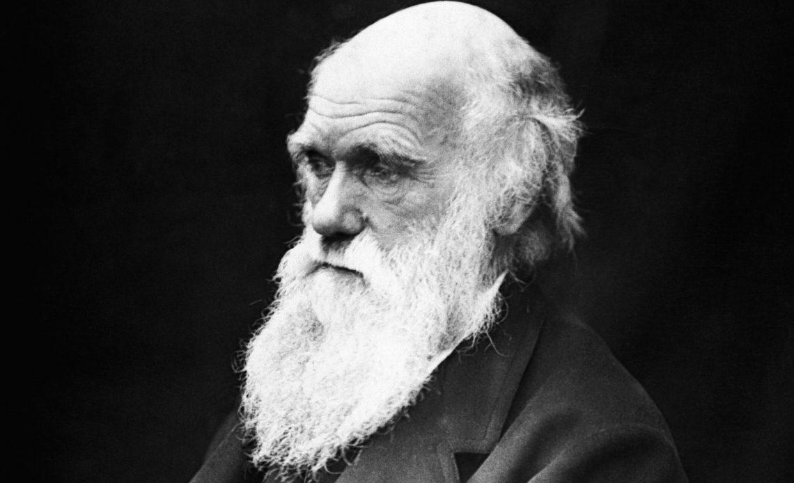yaşlı Charles Darwin