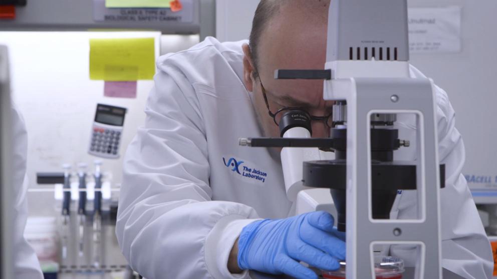 derya unutmaz mikroskopta inceleme yapıyor