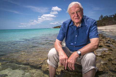 David Attenborough belgeselleri