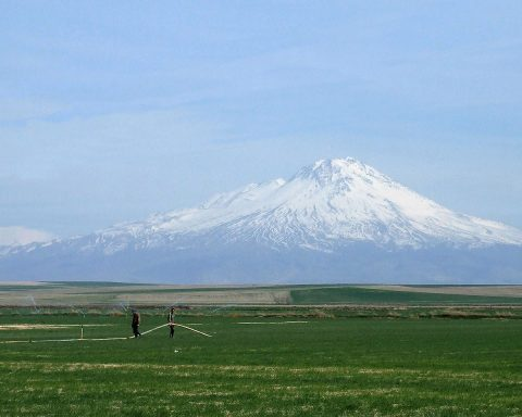 Uzaktan Hasan Dağ'ın görünümü. Önde yeşil tarlalar var.