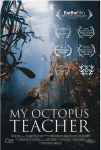 ahtapottan öğrendiklerim belgeseli posteri. posterde su altında yosun ormanını gösteriyor.