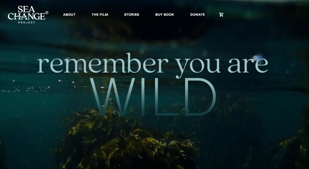 remember you are wild, hatırla sen vahşisin yazıyor. The Sea Change Projesinin ana sayfa görüntüsü.