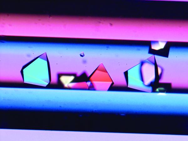 Protein kristalleri deneyi uluslararası uzay istasyonunda