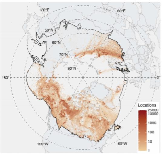 kuzey kutup bölgesinde iklim krizi etkileri