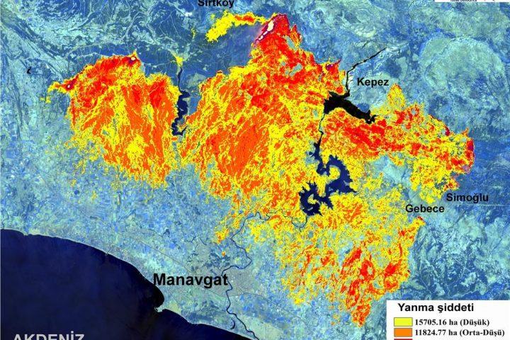Manavgat Yangını Haritası