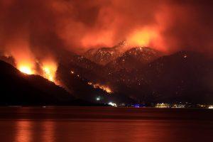 ormanlar yanıyor